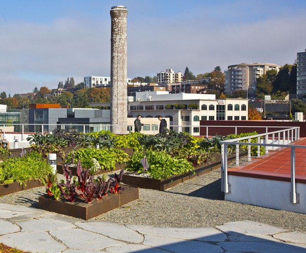 The roof garden on the Stack House Apartments in Seattle's South Lake Union neighborhood. (Michael Walmsley/Vulcan Real Estate)