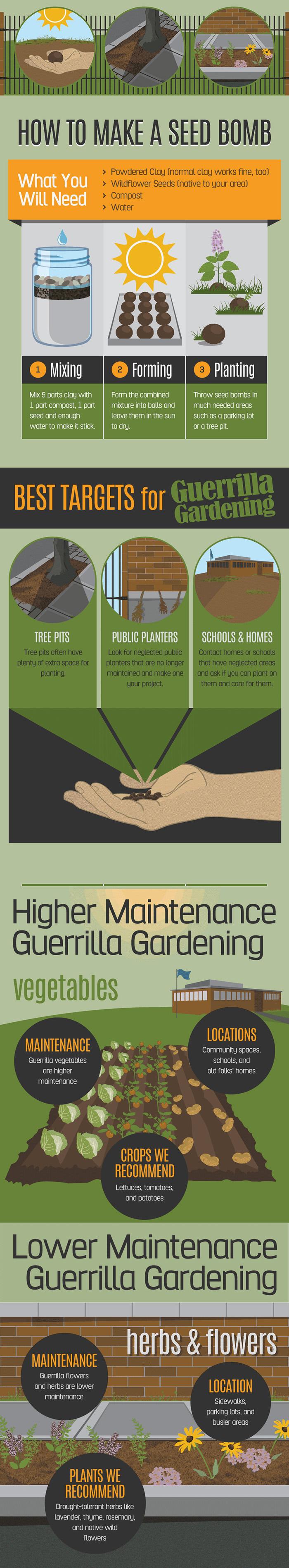 Guerrilla-gardening-infographic-2
