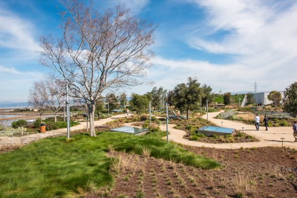 Touring Facebook's Rooftop Garden Where The Views Are Grand – And So
