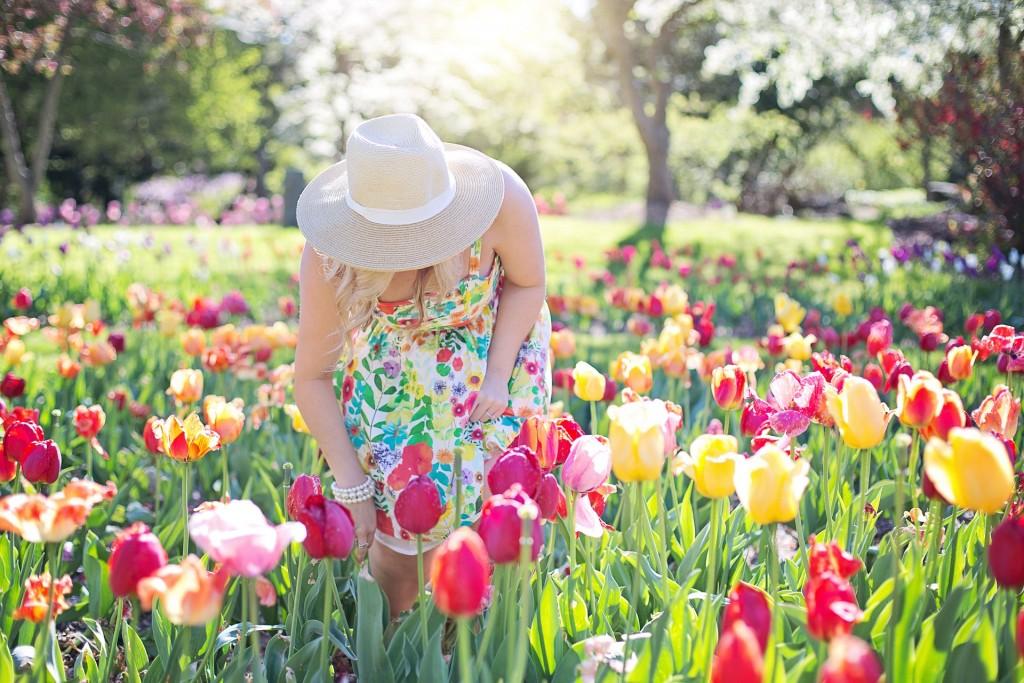 spring-2298281_1920