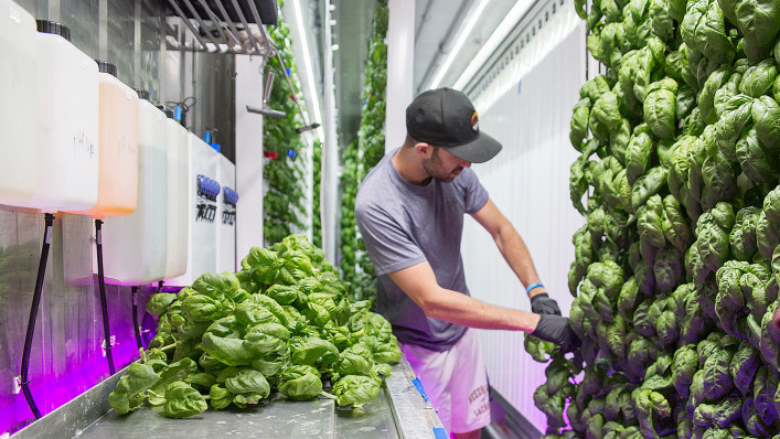 p-1-this-brooklyn-urban-farming-accelerator-is-planning-its-next-location