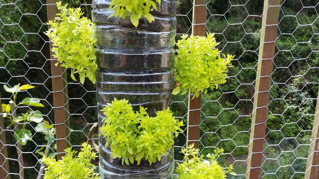 How to create the perfect vertical garden urban organic for Imagenes del huerto vertical